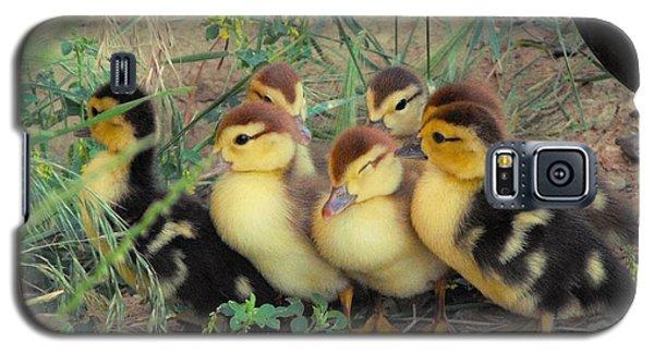 Ducklings Galaxy S5 Case