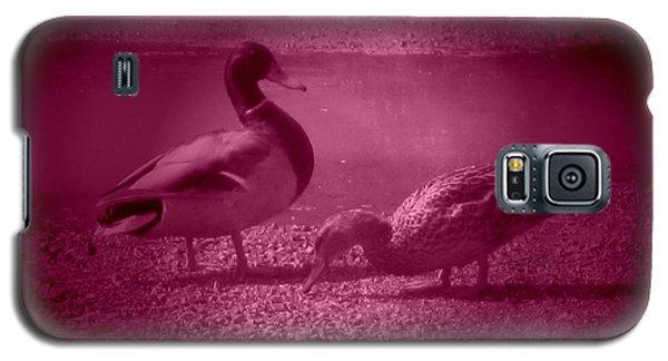 Ducks #1 Galaxy S5 Case