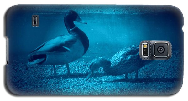 Ducks #2 Galaxy S5 Case