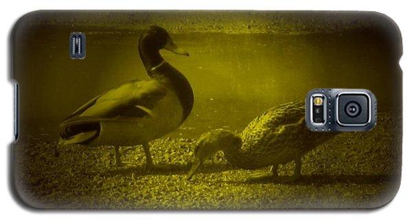Ducks #3 Galaxy S5 Case