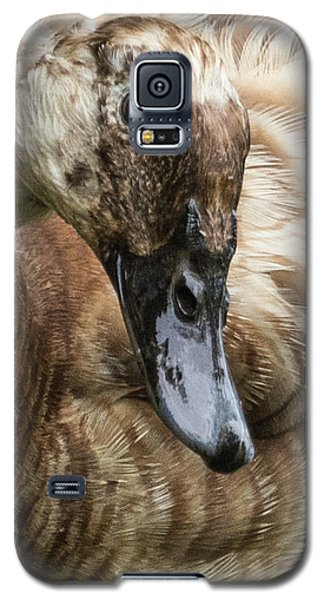 Ducks Head Galaxy S5 Case