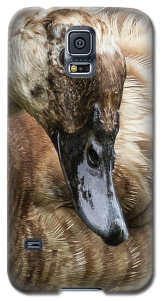 Ducks Head Galaxy S5 Case