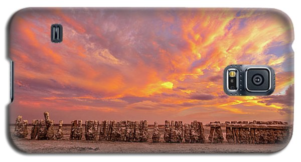 Galaxy S5 Case featuring the photograph Ducks In A  Row by Peter Tellone