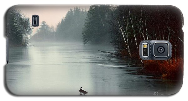 Ducks On A Frozen Pond Galaxy S5 Case by Elaine Manley