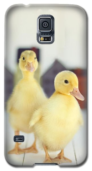 Ducks In The Neighborhood Galaxy S5 Case