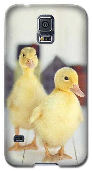 Ducks In The Neighborhood Galaxy S5 Case by Amy Tyler
