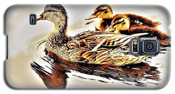 Ducks Galaxy S5 Case