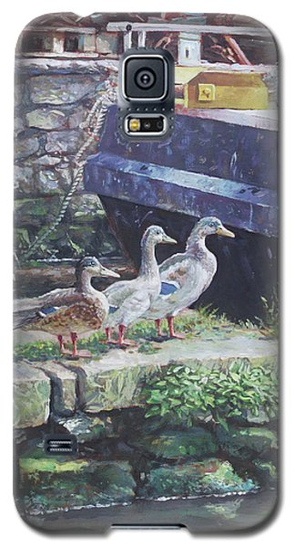 Galaxy S5 Case featuring the painting Ducks On Dockside by Martin Davey