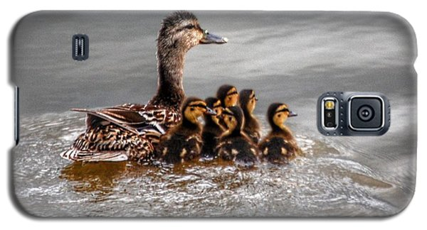 Ducky Daycare Galaxy S5 Case