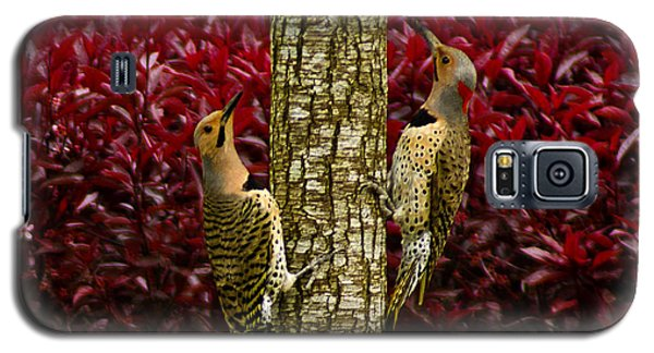 Dueling Woodpeckers Galaxy S5 Case