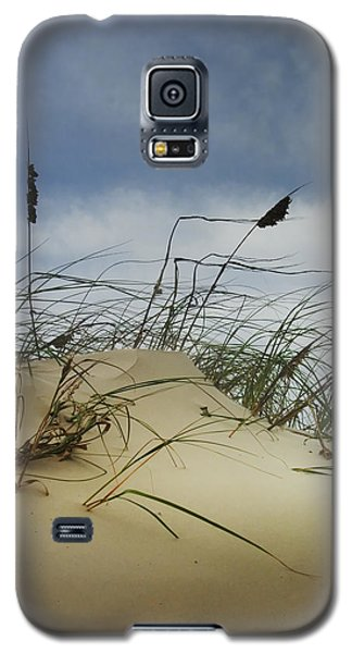 Dune And Beach Grass Galaxy S5 Case