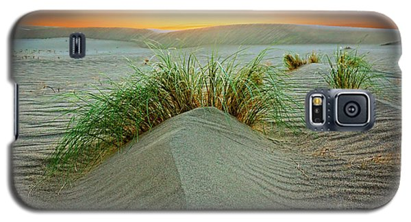 Dune Grass Of Bruneau Idaho Galaxy S5 Case by Martin Konopacki