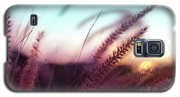 Galaxy S5 Case featuring the photograph Dune Scape by Laura Fasulo