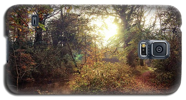 Dunmore Wood - Autumnal Morning Galaxy S5 Case