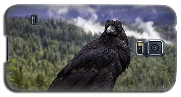 Dunraven Raven Galaxy S5 Case by Elizabeth Eldridge