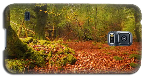 Dunstaffnage Castle Gardens Galaxy S5 Case
