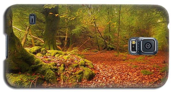 Dunstaffnage Castle Gardens Galaxy S5 Case