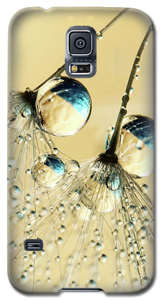 Galaxy S5 Case featuring the photograph Duo Shower Dandy Drops by Sharon Johnstone