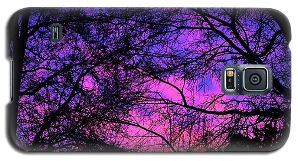 Dusk And Nature Intertwine Galaxy S5 Case