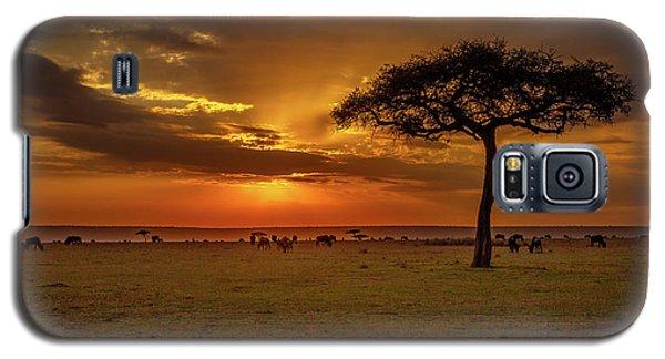 Dusk Over  The Serengeti Galaxy S5 Case