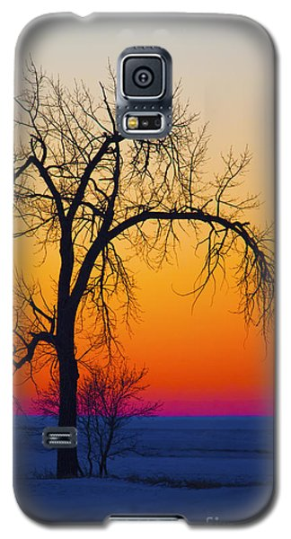Dusk Surreal.. Galaxy S5 Case