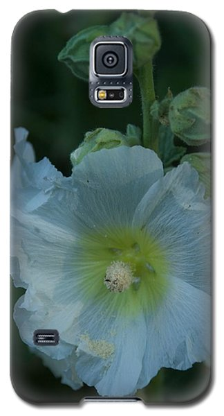 Dust Galaxy S5 Case by Joseph Yarbrough