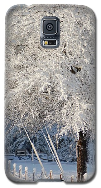 Dusted With Powdered Sugar Galaxy S5 Case