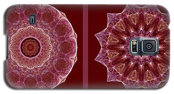 Dusty Rose Mandala Fractal Panel Galaxy S5 Case
