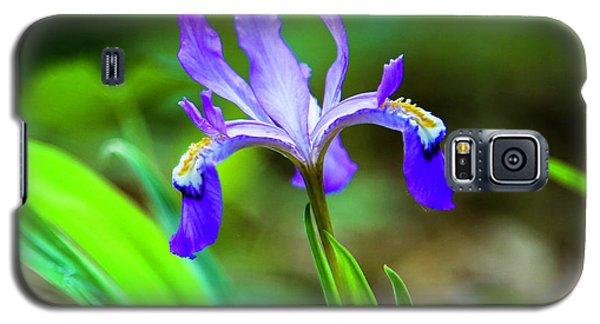 Dwarf Crested Iris Galaxy S5 Case