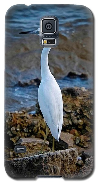 Eager Egret Galaxy S5 Case