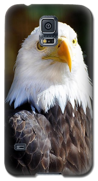 Eagle 14 Galaxy S5 Case