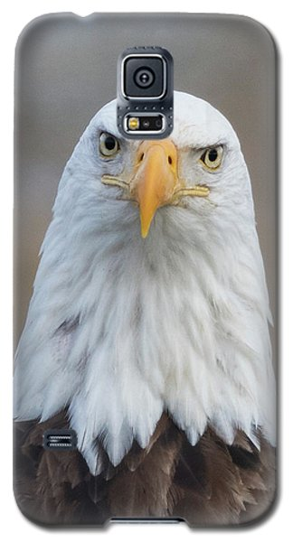 Galaxy S5 Case featuring the photograph Eagle Attitude by Angie Vogel