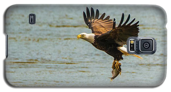 Eagle Departing With Prize Close-up Galaxy S5 Case