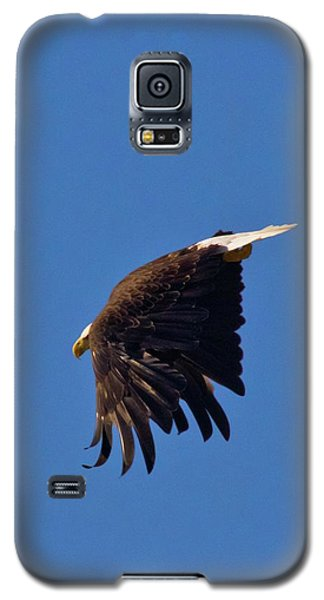 Galaxy S5 Case featuring the photograph Eagle Dive by Linda Unger