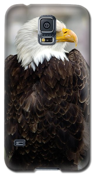 Eagle Galaxy S5 Case