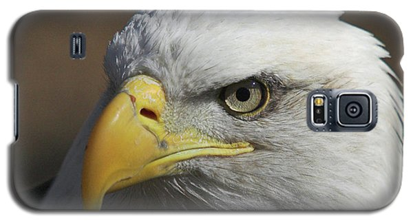 Galaxy S5 Case featuring the photograph Eagle Eye by Steve Stuller