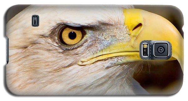 Eagle Eye Galaxy S5 Case