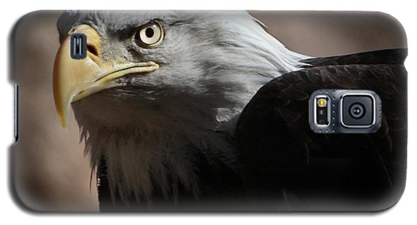 Galaxy S5 Case featuring the photograph Eagle Eyed by Marie Leslie