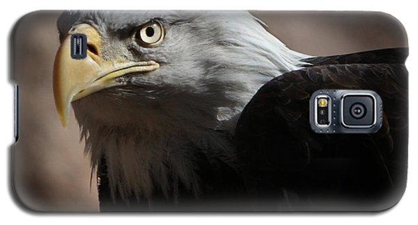 Eagle Eyed Galaxy S5 Case