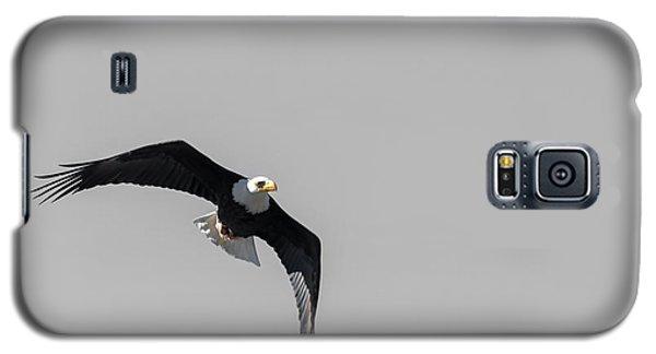 Bald Eagle Flight Galaxy S5 Case