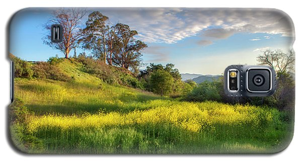 Galaxy S5 Case featuring the photograph Eagle Grove At Lake Casitas In Ventura County, California by John A Rodriguez