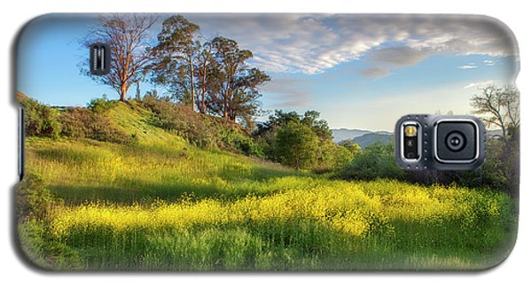 Eagle Grove At Lake Casitas In Ventura County, California Galaxy S5 Case