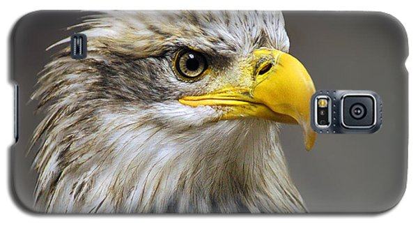 Eagle Galaxy S5 Case by Harry Spitz