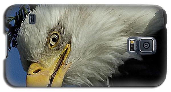 Eagle Head Galaxy S5 Case by Sheldon Bilsker