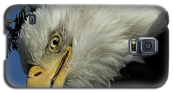 Eagle Head Galaxy S5 Case