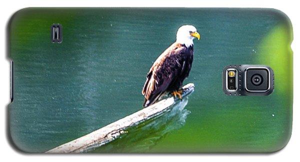 Eagle In Lake Galaxy S5 Case