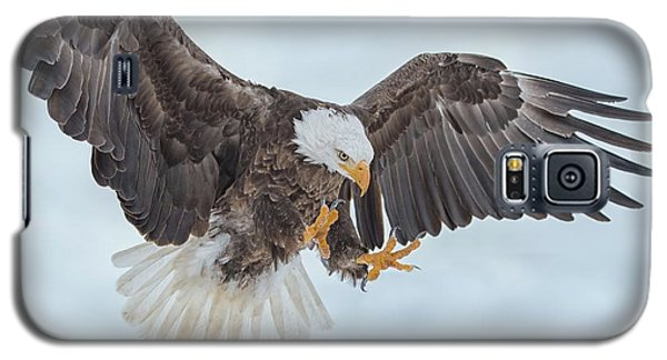 Eagle In The Clouds Galaxy S5 Case by CR Courson