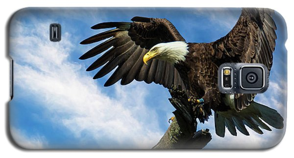 Eagle Landing On A Branch Galaxy S5 Case