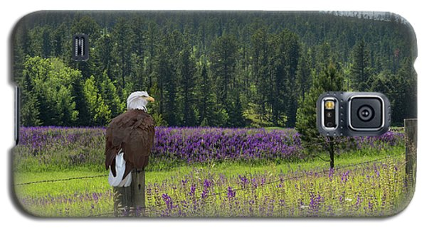 Eagle On Fence Post Galaxy S5 Case