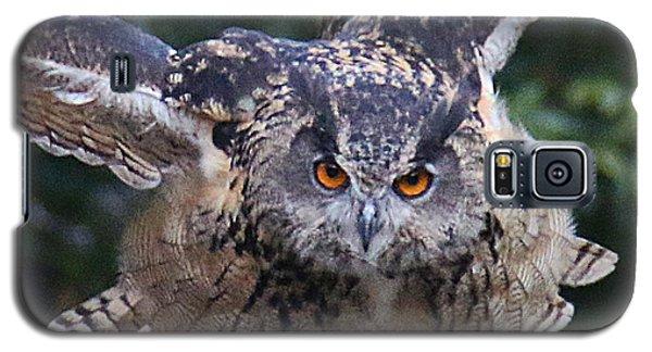 Eagle Owl Close Up Galaxy S5 Case